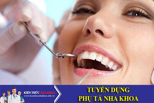 Công Ty Cổ Phần Up Dental Tuyển Dụng Phụ Tá Nha Khoa