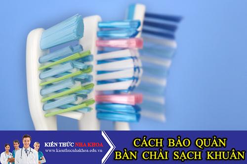 Cách Bảo Quản Bàn Chải Đánh Răng Luôn Sạch Khuẩn